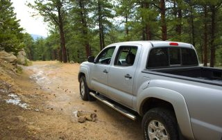 West Magnolia Trail